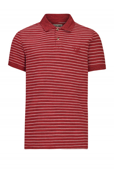 Herren Polo- Shirt